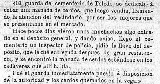 Noticia cerdos cementerio Toledo